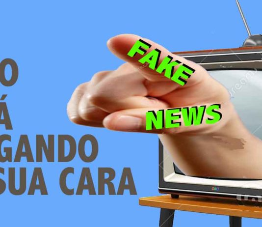 lei fake news